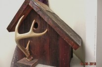 White Tail Deer Antler Birdhouse